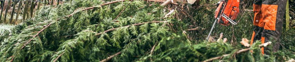 Offerte kosten tuin renoveren 1900br 400hg 70 my cms for Tuin renoveren