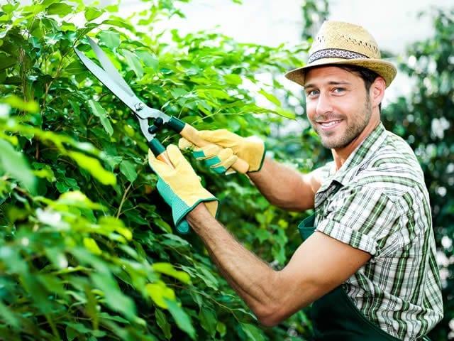 Daarna makkelijk onderhouden van de nieuwe tuin :-)